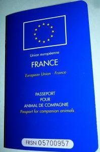 Voyager avec son chien - Passeport européen chien