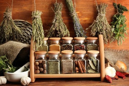 Toux du chenil : remèdes naturels