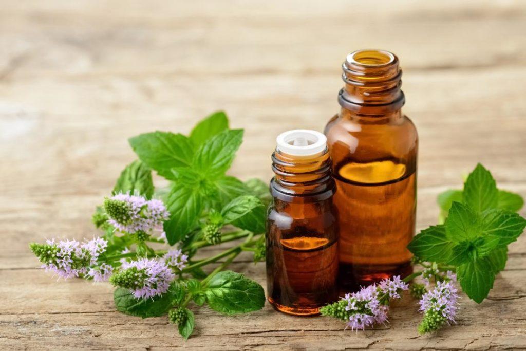 Anti-puces-huile-essentielle