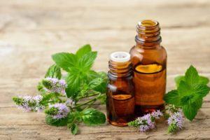 Anti-puces-huile essentielle