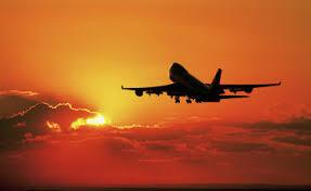 Voyager avec son chien - Voyage avion