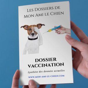 Dossier vaccination chien, ce qu'il ne faut pas faire, precautions