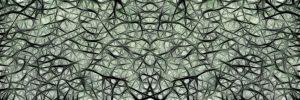 Photo-reseau-neurones-cerveau